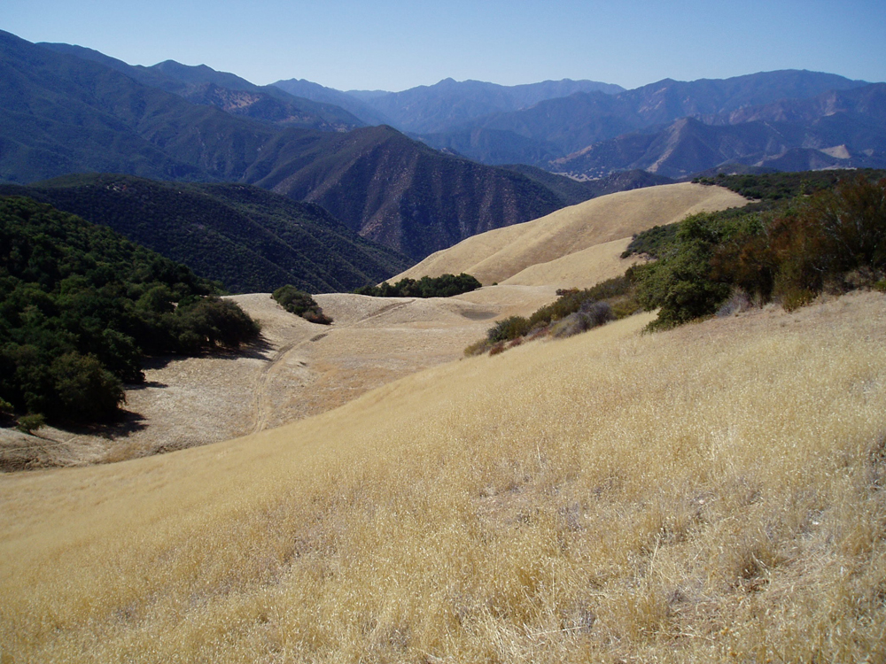 Open Position Conservation Projects Manager Big Sur Land Trust